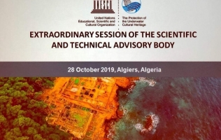 The first extraordinary Meeting of the Scientific and Technical Advisory Body (STAB)